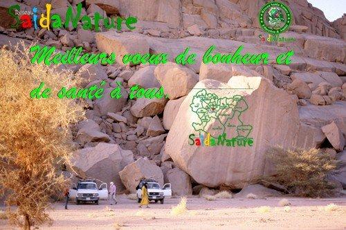 Bonne Année à vous cher(e)s ami(e)s de SaidaNature dans SaidaNature News bonneanne20111