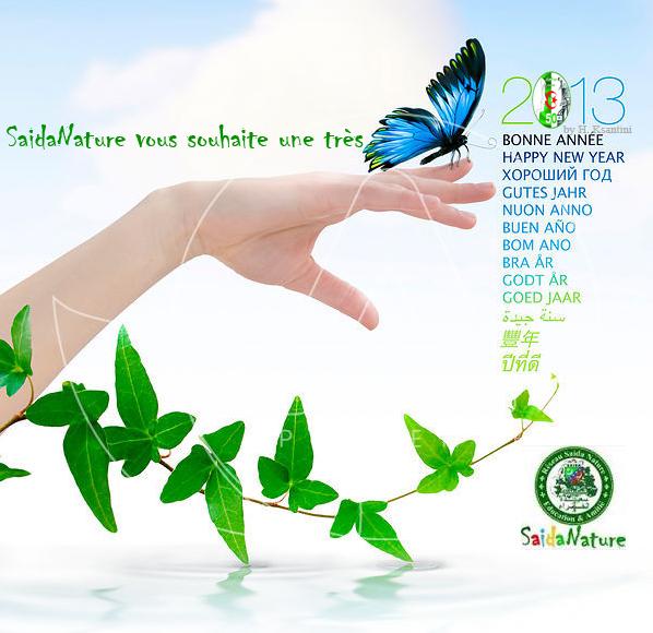 Meilleurs Voeux pour 2013 dans SaidaNature News voeux2013_5985801